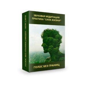 Вераслава ЗВУКОВАЯ МЕДИТАЦИЯ ПРАКТИКА «СИЛА ЖИЗНИ»