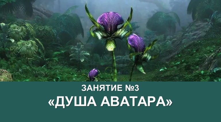 Душа Аватара