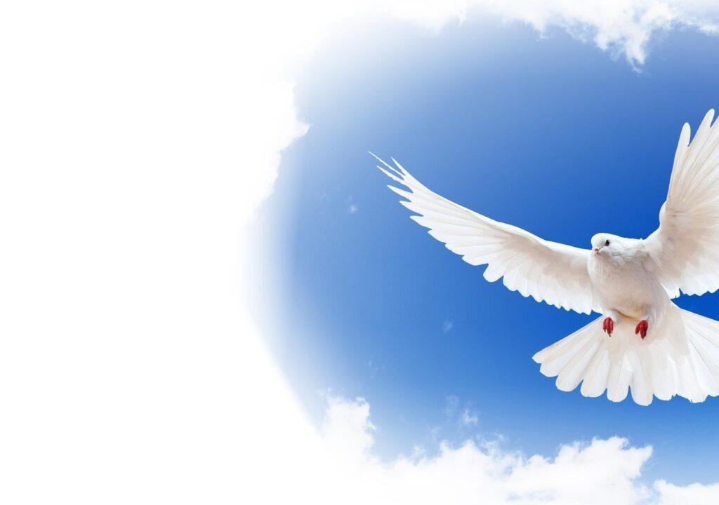 ппрощение и чувство вины медитация прощения души исцеление